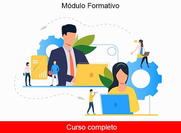 Administración de sistemas de planificación de recursos empresariales y de gestión de relaciones con clientes - completo